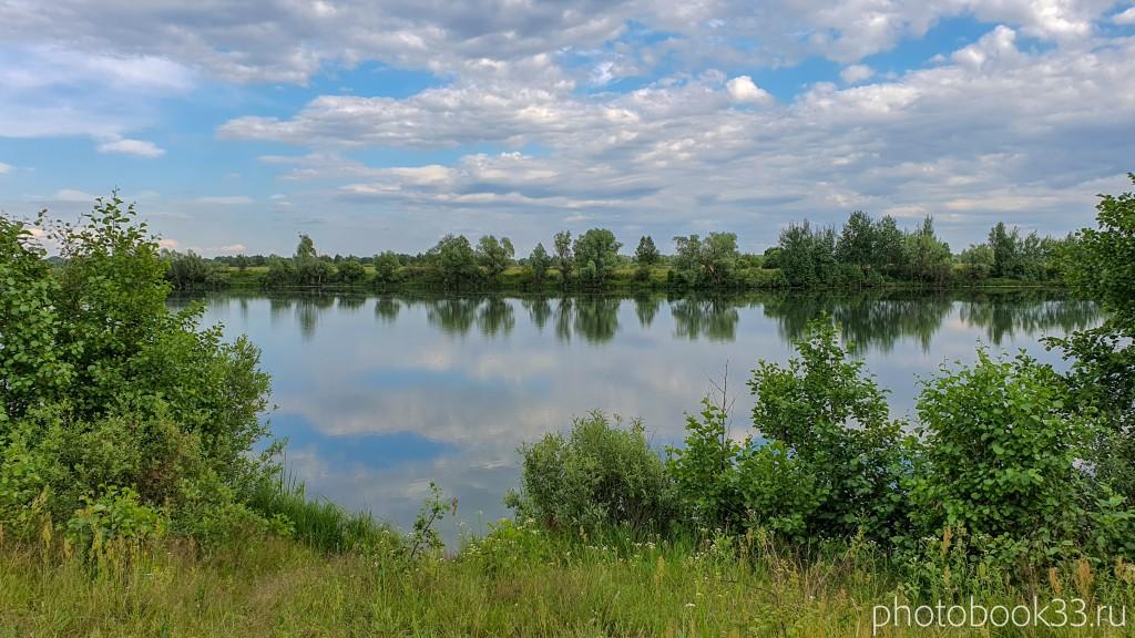 18 Природа деревни Усад, Меленковский район