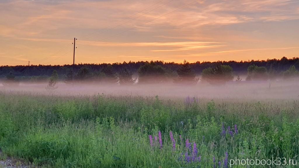 32 Природа Меленковского района. Деревня просеницы
