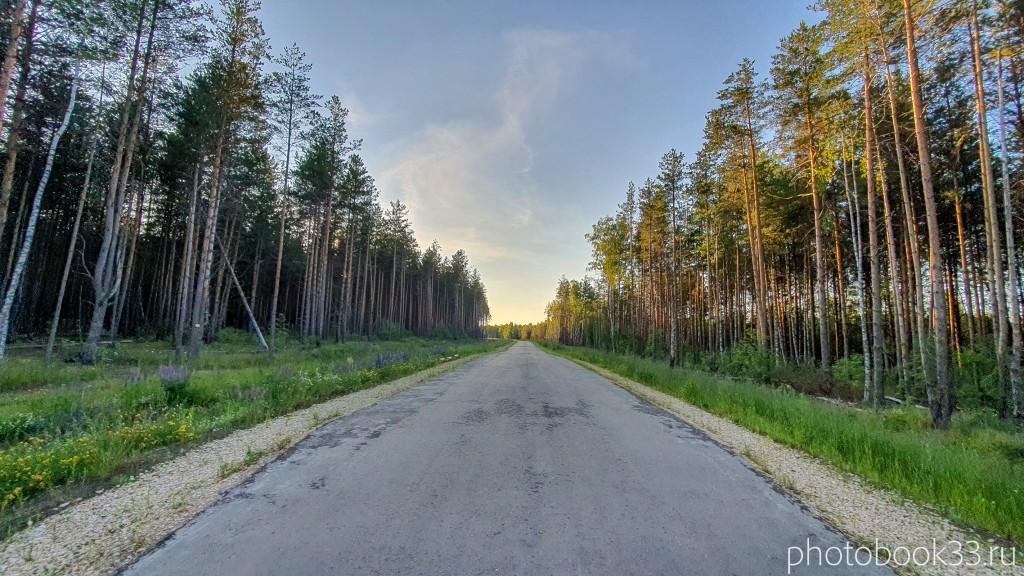 42 Дорога Городищи - Просеницы - Рождествено