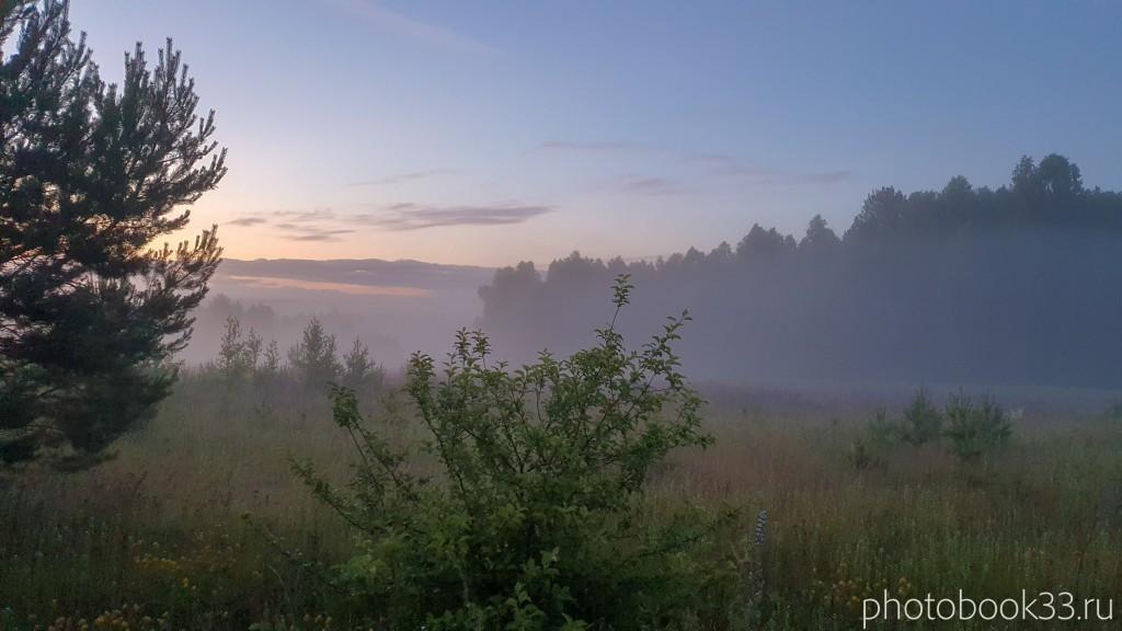 58 Природа Городищи Меленковский район