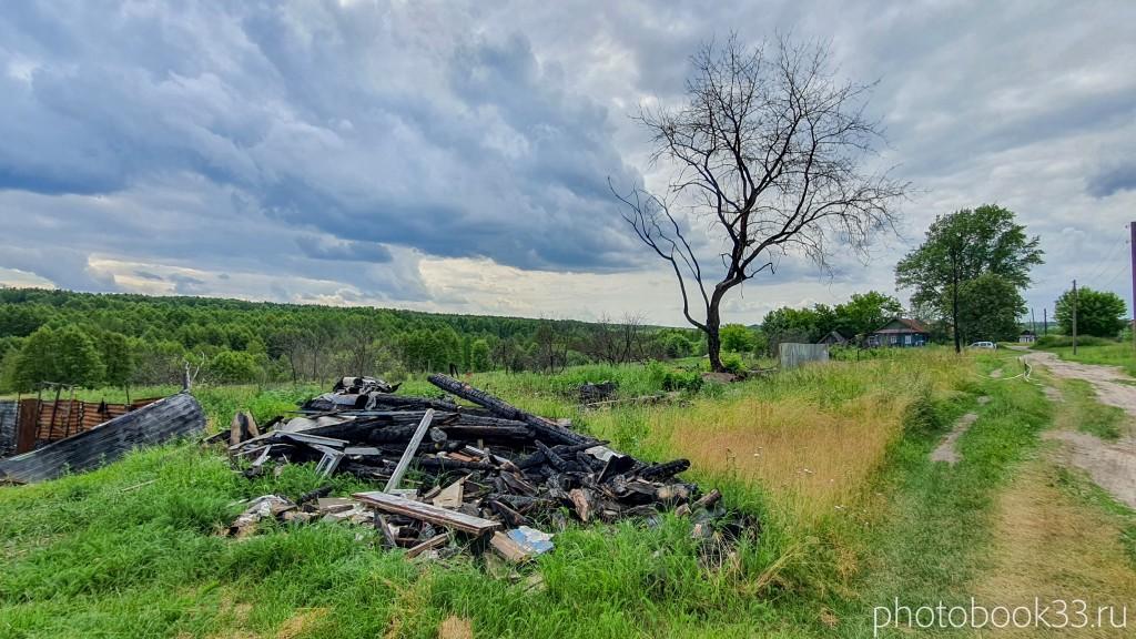 58 Сгоревшие и разрушенные дома в д. Просеницы