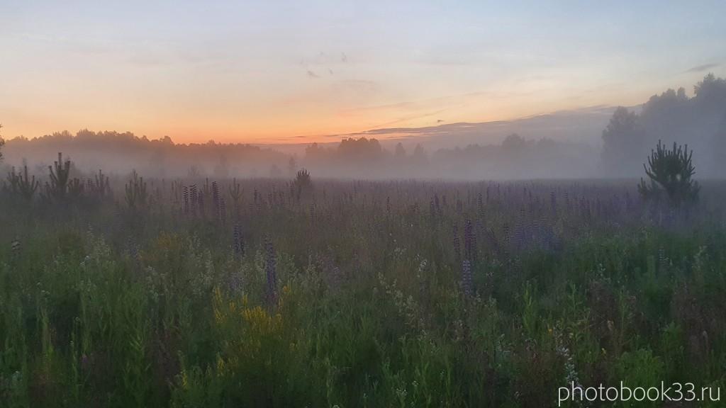 60 Природа Городищи Меленковский район