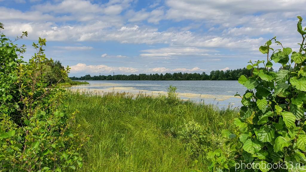 71 Берег Урвановского озера в Урваново