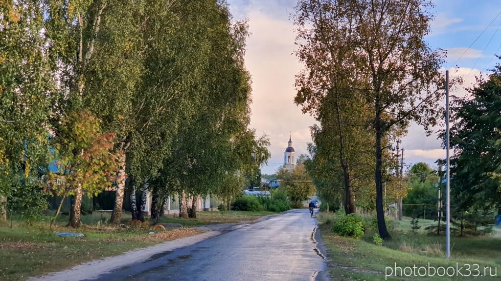 141 Улица в с. Лазарево, Муромский район