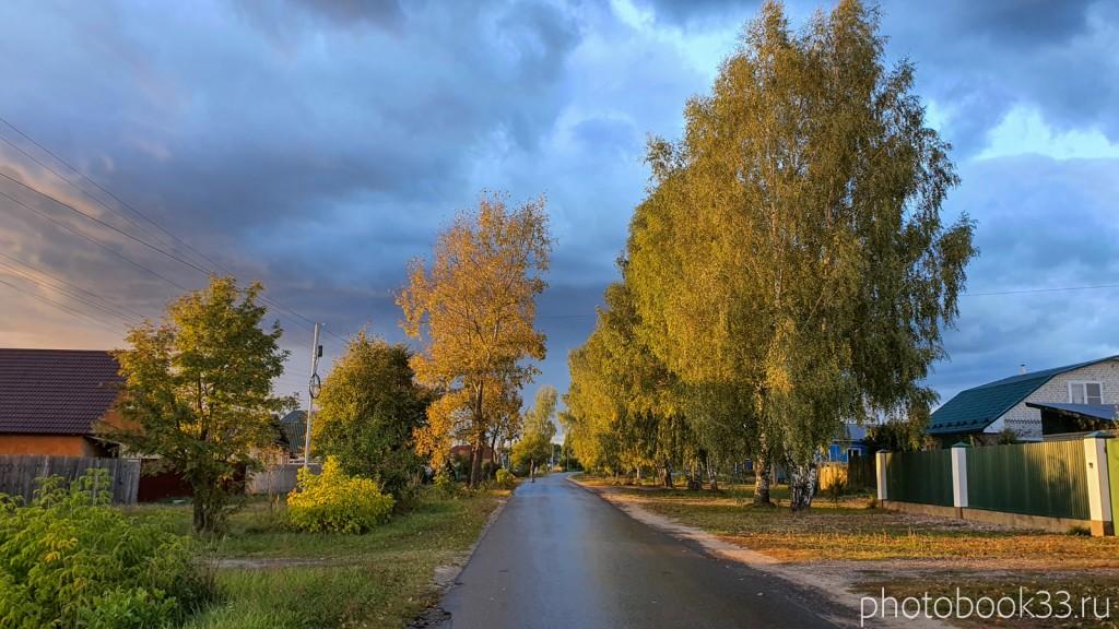 147 Улица в Лазарево, после дождя