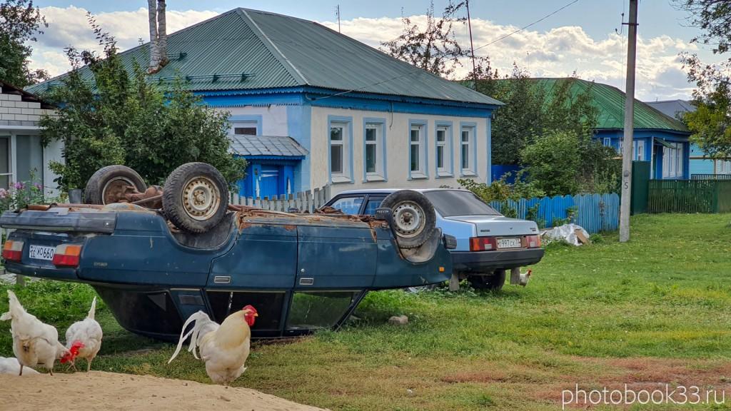 33 Разведение куриц в с. Лазарево, Муромский район