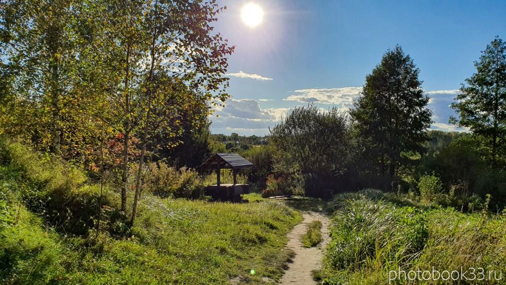 64 Природа с. Лазарево, Муромский район