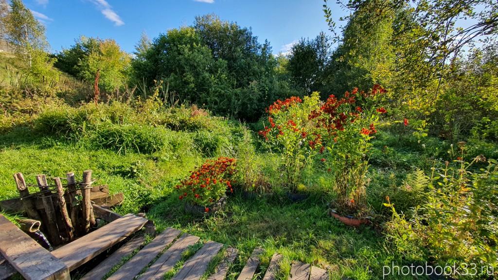 69 Природа с. Лазарево, Муромский район