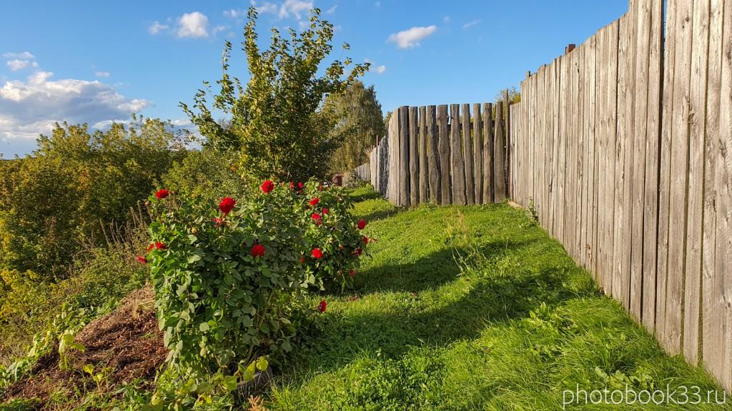 78 Природа с. Лазарево, Муромский район