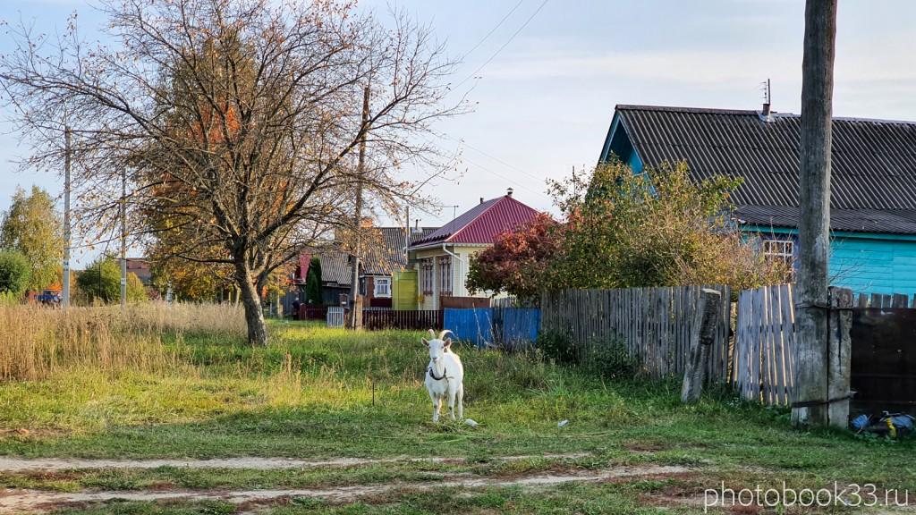 06 Улица в селе Денятино, Меленковский район