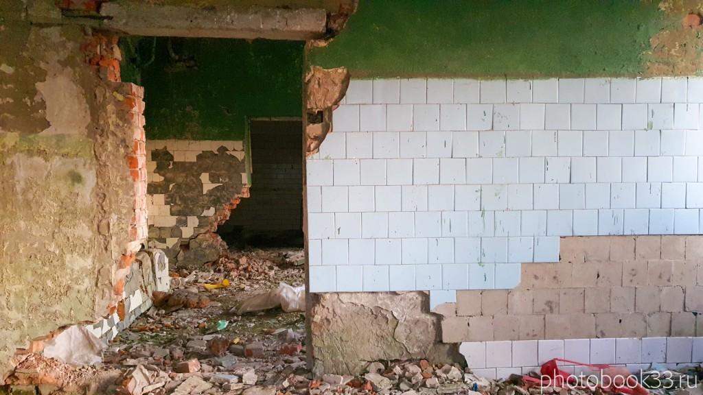 135 Разрушенная баня в с. Денятино, Меленковский район