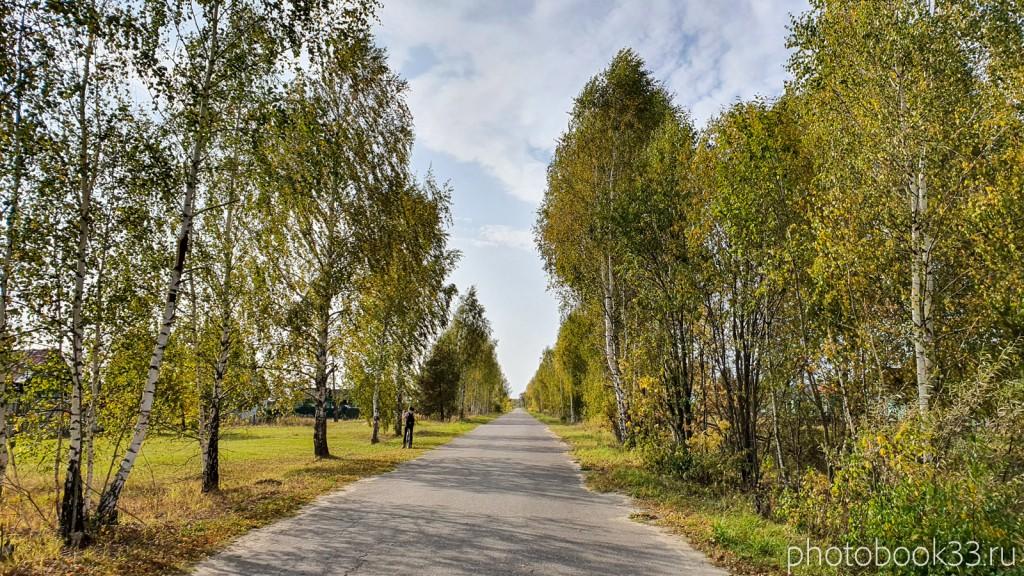 14 Улица в д. Грибково, Муромский район