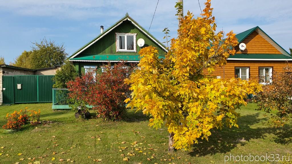 30 Деревянные дома в д. Грибково