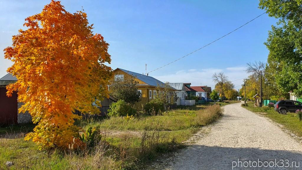 39 Кольдино осенью