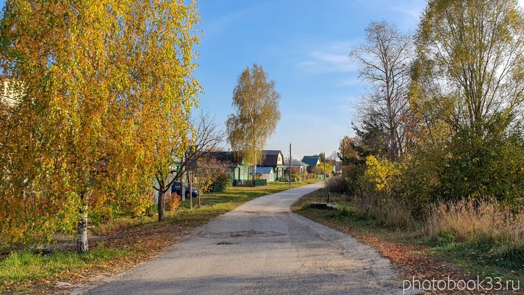 09 Улица в с. Левино, Меленковский район