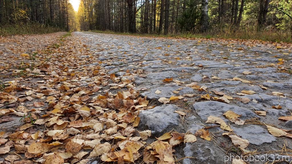 10 Сельская дорогая на Бутылицы через Зимницы