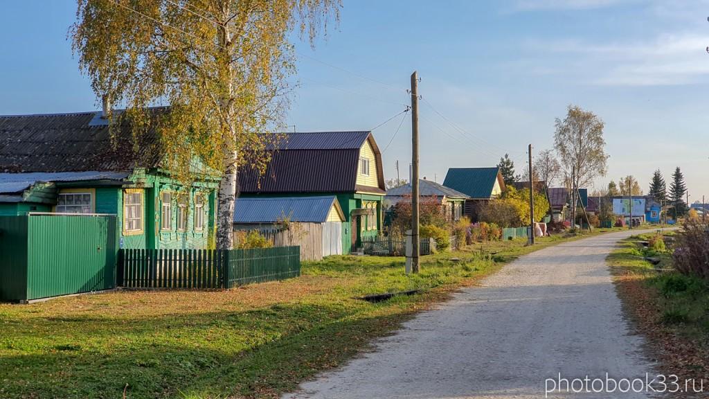 11 Улица в с. Левино, Меленковский район