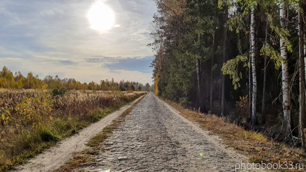 13 Сельская дорогая на Бутылицы через Зимницы