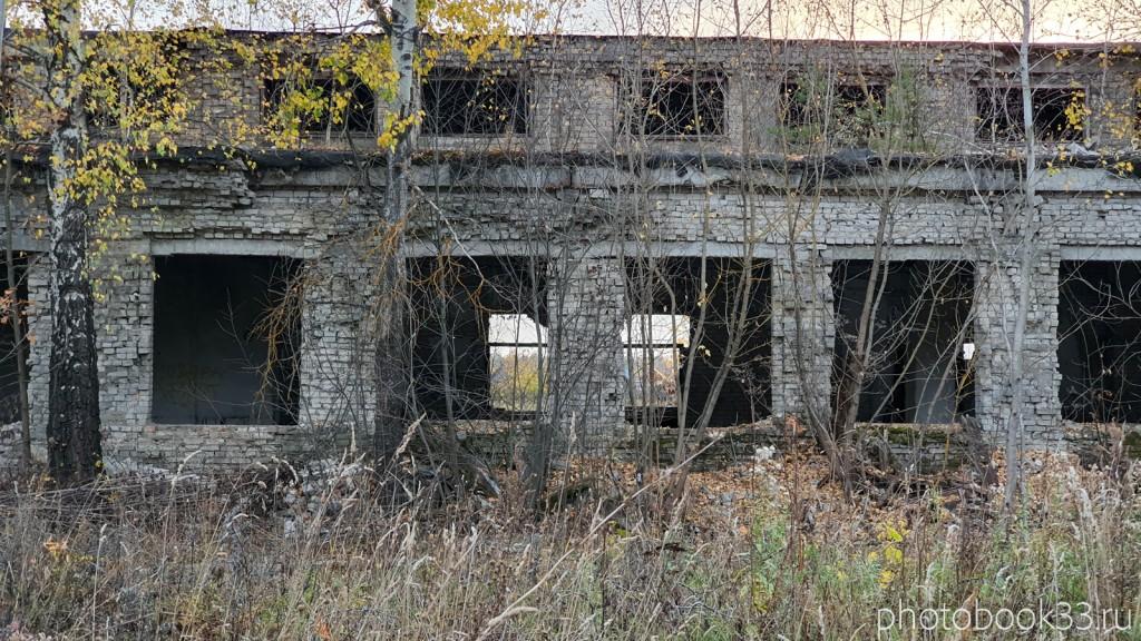 138 Разрушенный совхоз села Бутылицы, Владимирская область