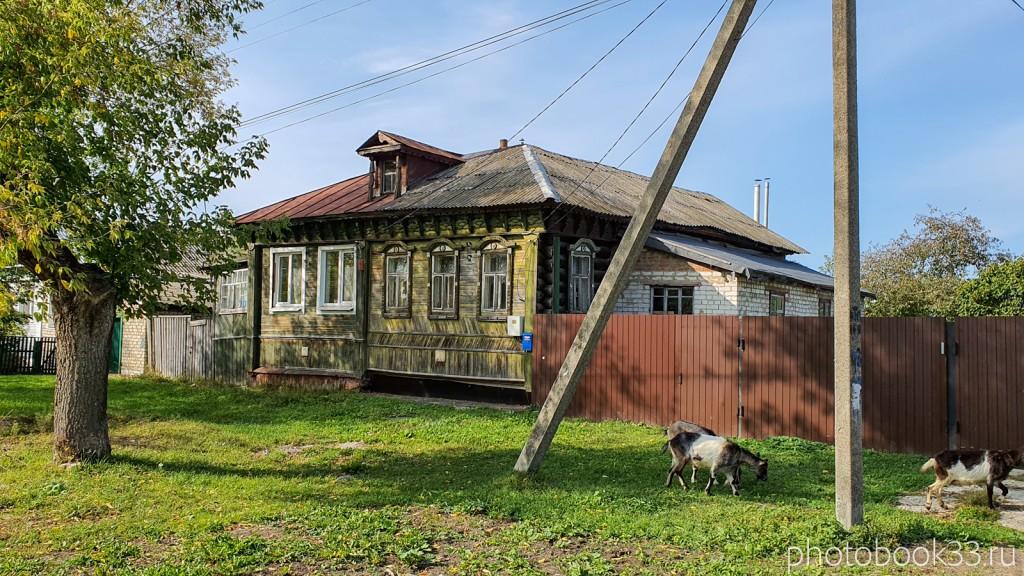 32 Козы в деревне Орлово, Муромский район