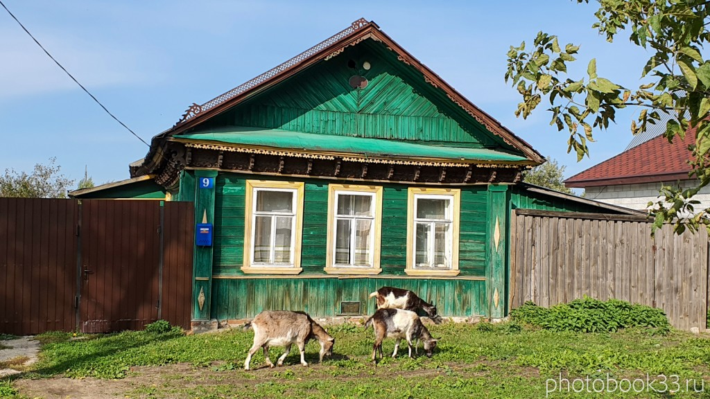33 Козы в деревне Орлово, Муромский район