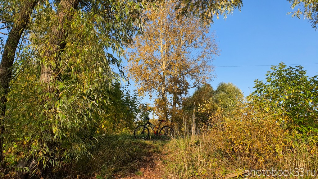 42 Природа села Стригино, Муромский район