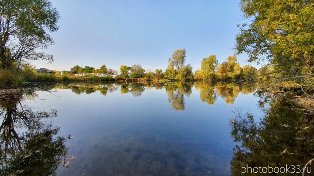 50 Пруд в селе Стригино, Муромский район