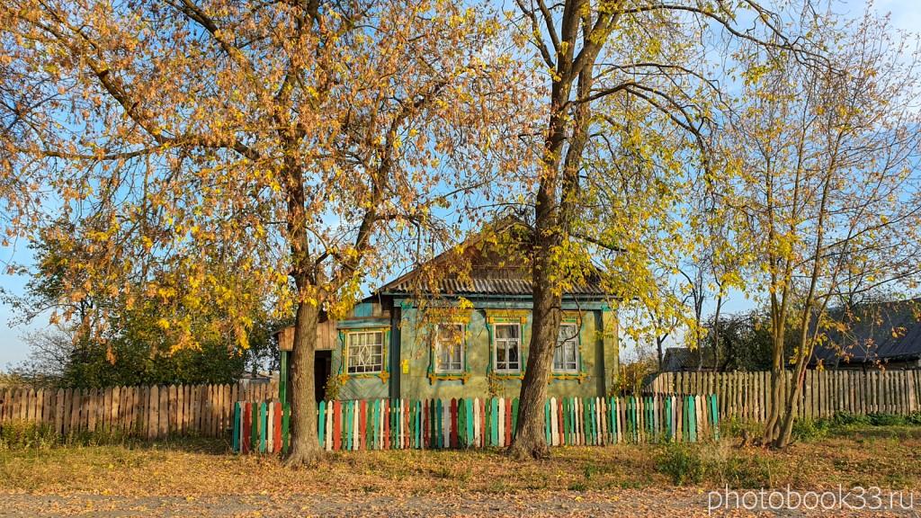 55 Деревянный дом в селе Левино, Меленковский район