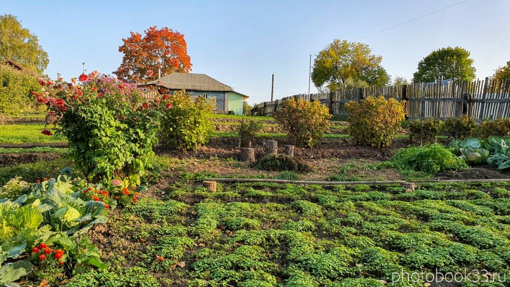 55 Огород в селе Стригино, Муромский район