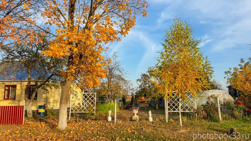 87 Осень в деревне Левино, Владимирская область