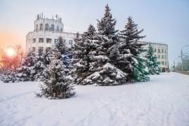 Январское утро… Место действия Владимир, 2021