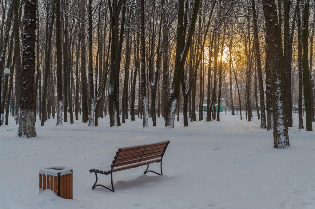 Январское утро... Место действия Владимир, 2021 03