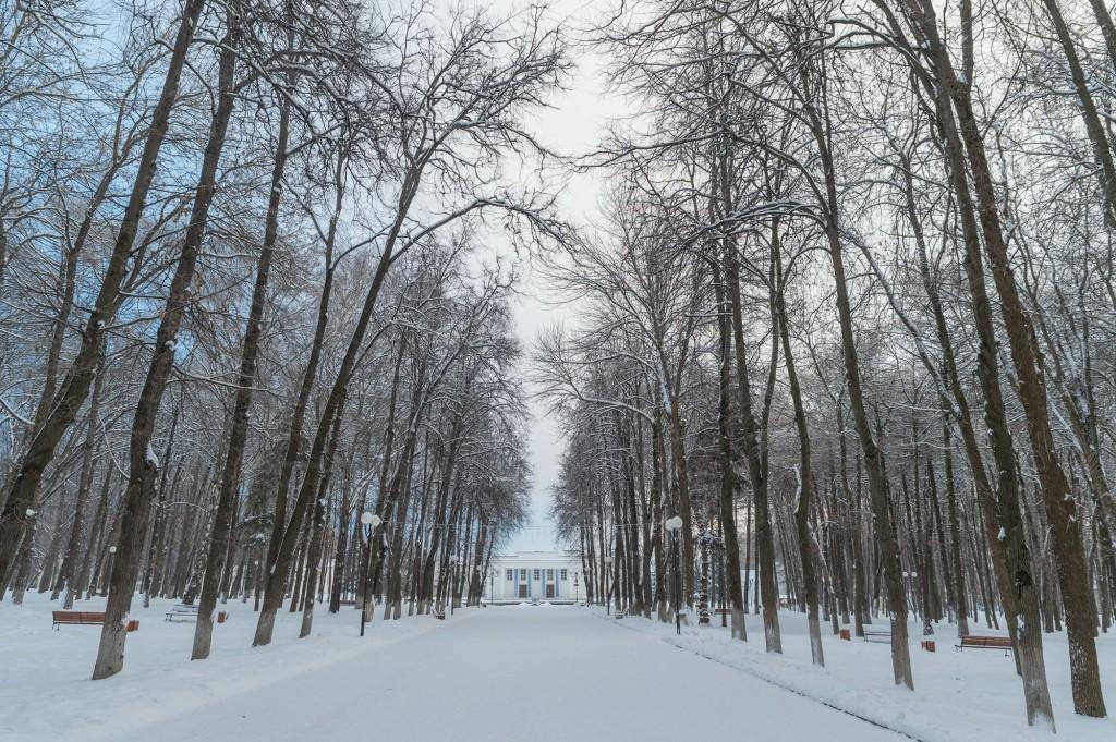 Январское утро... Место действия Владимир, 2021 09